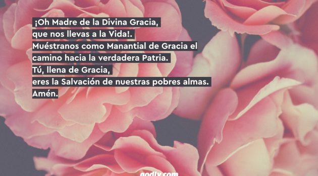 Mayo Mes de María: 30 Rosas a María | 5 Rosa.