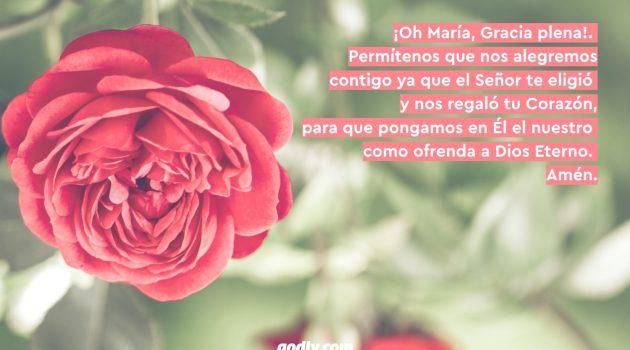Mayo Mes de María: 30 Rosas a María | 6 Rosa.