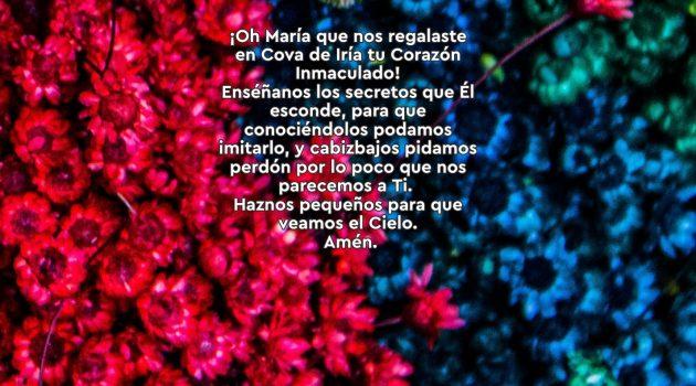 Mayo Mes de María: 30 Rosas a María | 13 Rosa.