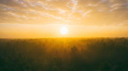 Zmiłuj się nade mną, Panie | Psalm 51