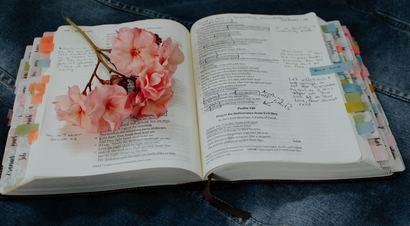 Cytat na dziś   Słowa Twoje, Panie, są duchem i życiem. Ty masz słowa życia wiecznego